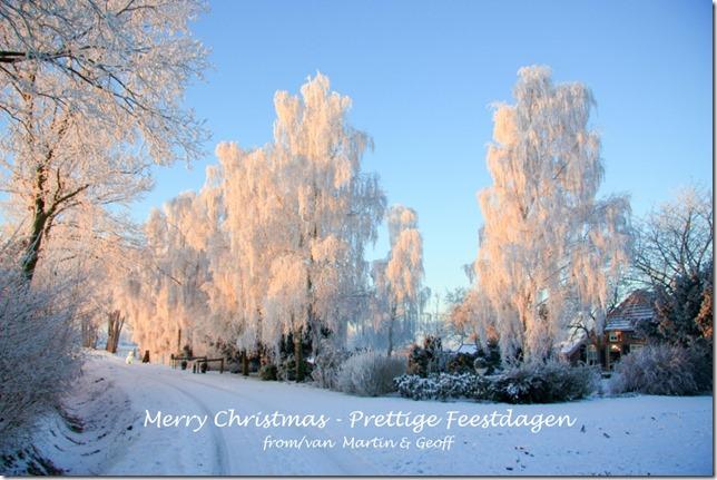 Christmas 2014s
